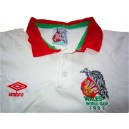1991 Wales 'World Cup' Special Edition