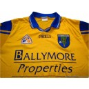 1999-2002 Roscommon (Ros Comáin) Home Shirt