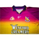 2003-04 Wexford (Loch Garman) Match Worn No.29 Home Shirt